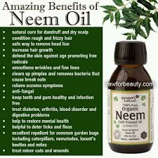 Amazing Benefits of Neem Oil
